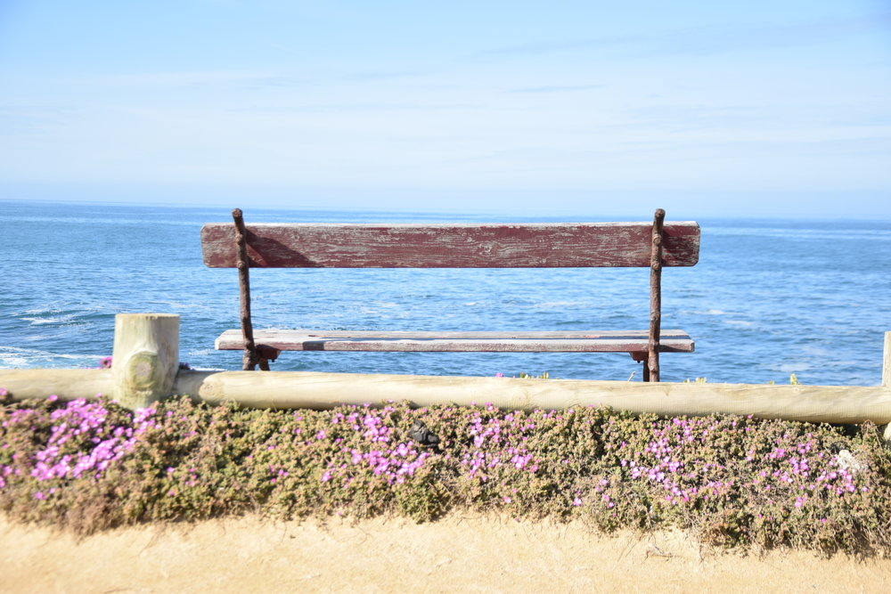 Bench-sea-view.jpg
