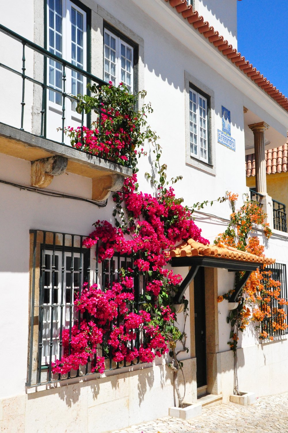 Bougainvillea-walls-portugal.jpg