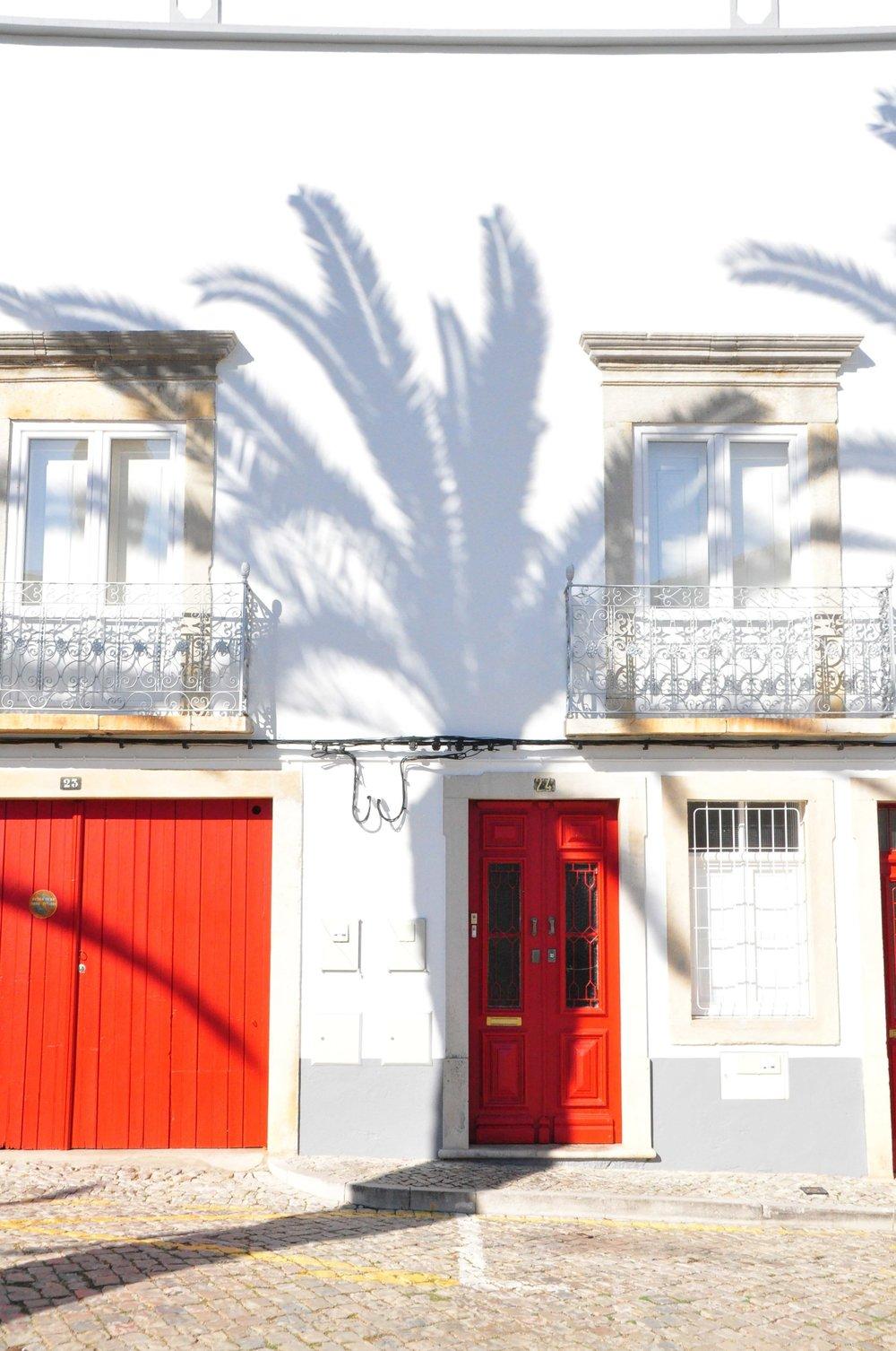 Palm-shadows-wall.jpg