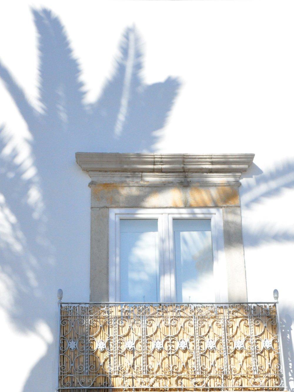 Palm-shadows..jpg