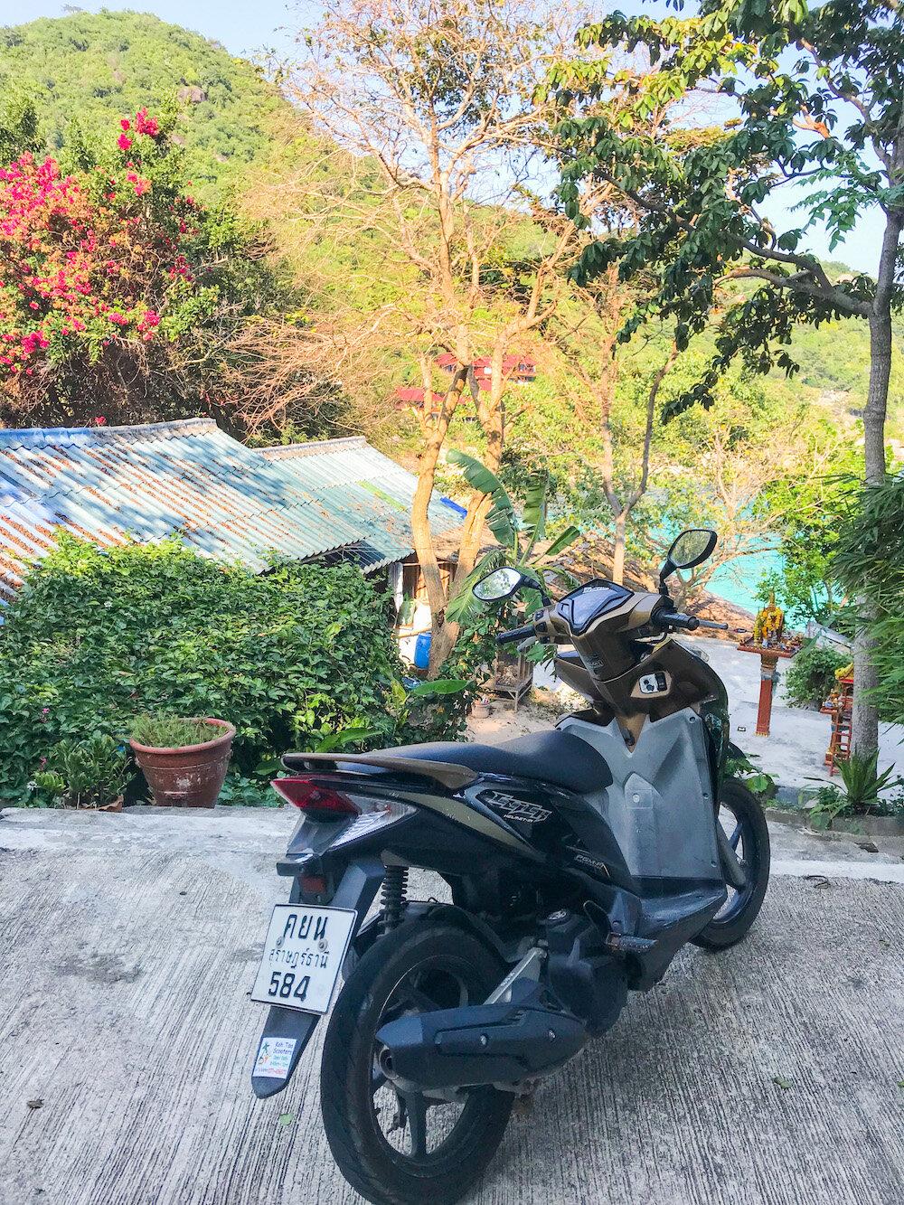 scooter-rental-koh-tao.JPG